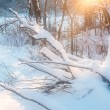 Sunset in winter field. — Stock Photo