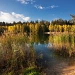 Autumnal lake — Stock Photo #4214754