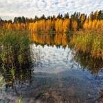 Autumnal lake — Stock Photo #4215310