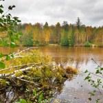 Autumnal lake — Stock Photo #4215681