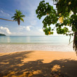 Beautiful tropical beach — Zdjęcie stockowe