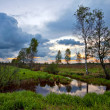 Sunset in the spring field — Stock Photo