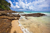 Exotic tropical beach — Stock fotografie