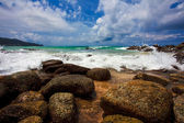 Exotic tropical beach — Stockfoto