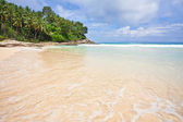 Exotic tropical beach — Stok fotoğraf