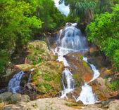 Cachoeira cascata bonita — Fotografia Stock