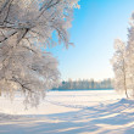 Winter park — Stock Photo #5274583