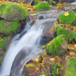 Beautiful cascade waterfall in autumn forest  — Stock Photo