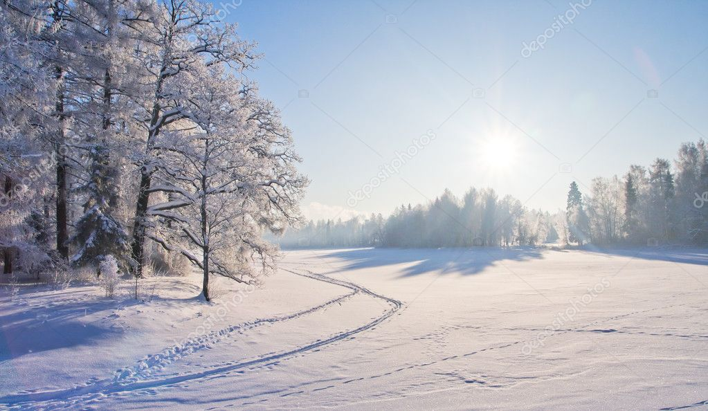 Winter park in snow — Stock Photo #5274623