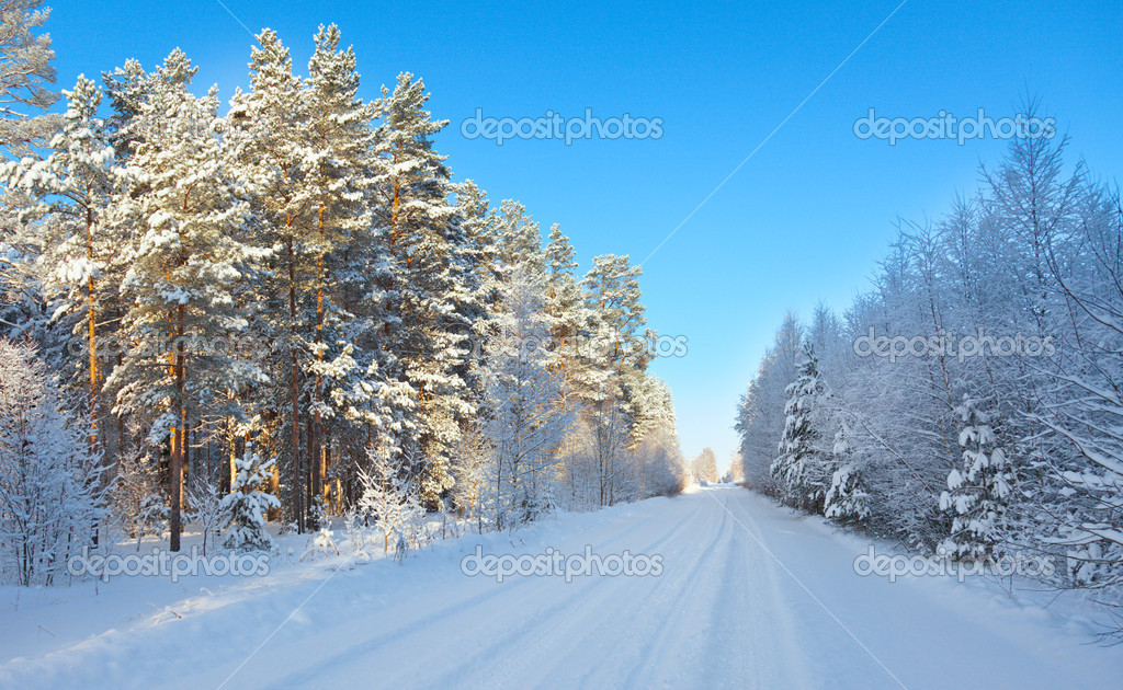 Snow field and forest under blue sky with crescent  Stock Photo #5282391