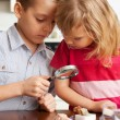 Children are considering a magnifying glass collection of stones — Stock Photo #5163929