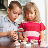 Children are considering a magnifying glass collection of stones — Photo
