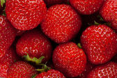 Ripe strawberry close up — Stock Photo
