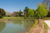 Parque natural verde — Foto de Stock