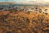 Sea with stones — Stock Photo