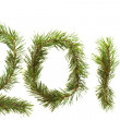 Fir branches 2011 — Stock Photo