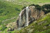 Waterfall in green nature — Stock Photo