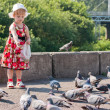 Girl in dress feeding pigeons — Stock Photo