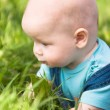 A small child lying on the grass — Stock Photo