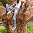 Woman sits on huge tree i — Stock Photo