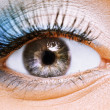 Beauty female eye with blue make — Stock Photo