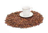 White cup on the corns of coffee — Stock Photo