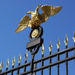Double-headed eagle - Stock Photo
