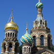 Domes of Church of the Savior on the Spilt Blood — Stock Photo #4040189