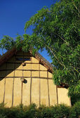House in bamboo thickets — Stock Photo