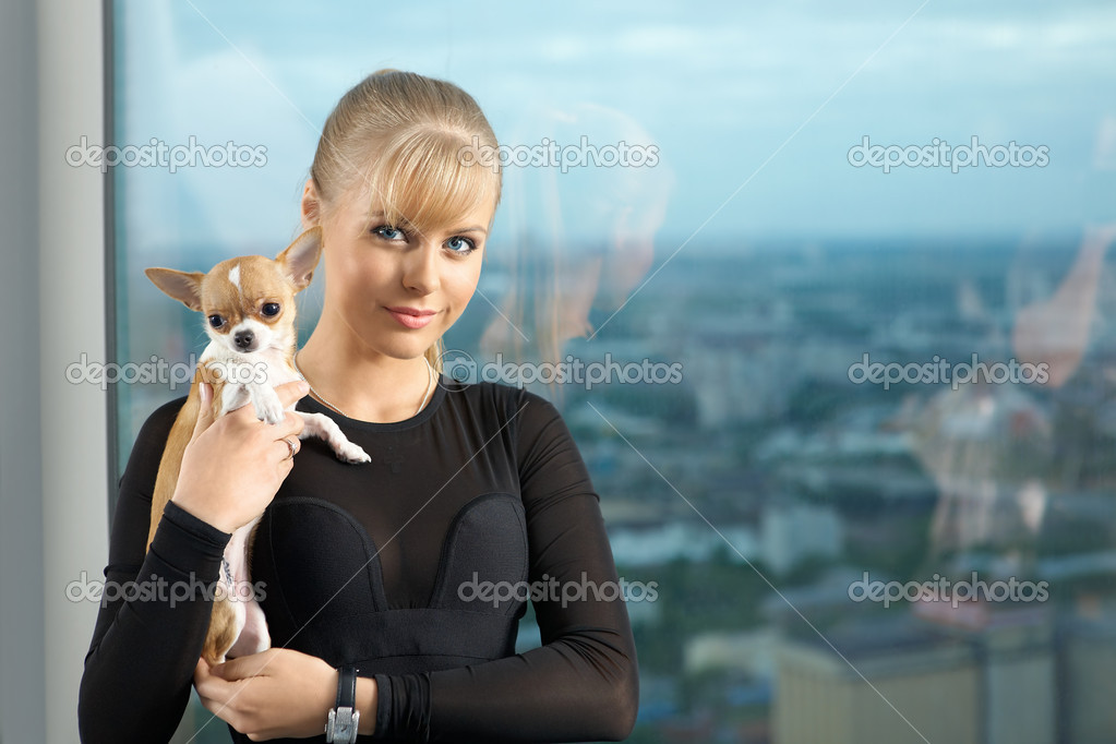 The elegant young woman at a window with the tiny doggie on hands — Stock Photo #3991759