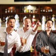 Fans at the pub - Stock Photo