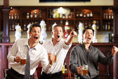 Fans at the pub — Stock Photo