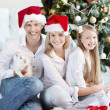 Stock Photo: New Year at home