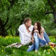 Royalty-Free Stock Photo: Enamoured couple on picnic