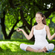 Yoga outdoors — Stock Photo #4593653
