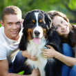 Young couple with dog — Stok Fotoğraf #4604623