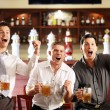Young men rejoice the victory of his team in a bar — Stock Photo #4690052