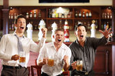 Mladí muži se radují vítězství svého týmu v baru — Stock fotografie