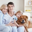 Young parents and the child playing with a dog — Stock Photo #4716007