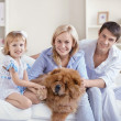 Together with pets — Stock Photo