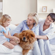 Happy Family — Stock Photo #4716884