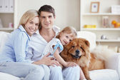 Young parents and the child playing with a dog — Stock Photo