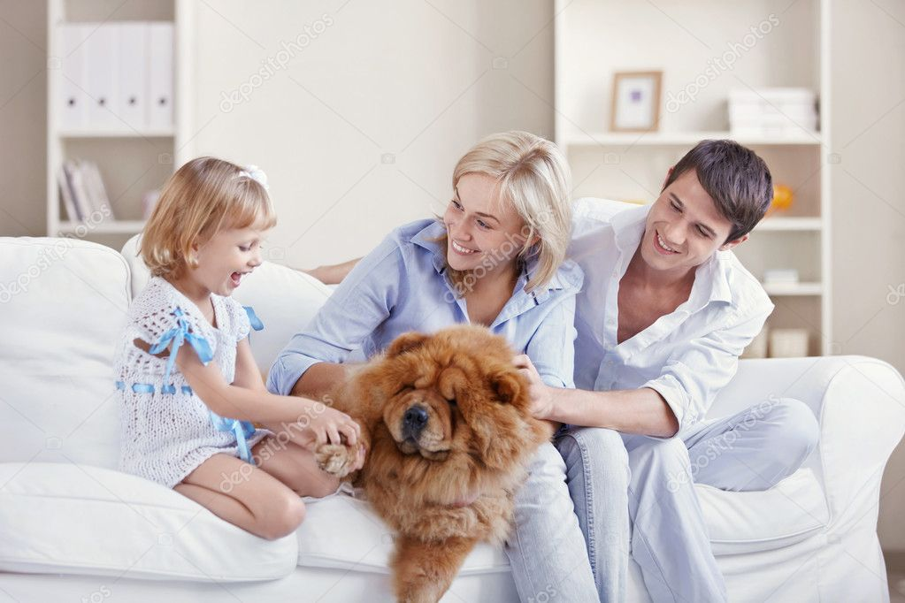 Young family with a dog at home — Stock Photo #4716884