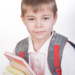 Schoolboy with books and backpack — Stock Photo