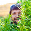 Young man in the bush of cannabis — Stock Photo #4627310