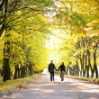 Couple walks down the park alley - Foto Stock