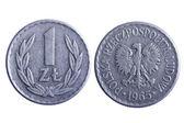 Poland coins isolated — Stock Photo