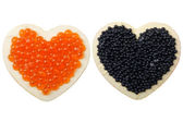 Magnet with caviar — Stock Photo