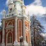 Russia Tsaritsino Estate park in Moskow — Stock Photo