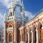 Tsaritsino Estate park in Moskow — Stock Photo